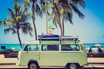Volkswagen bus in front of palm trees on a sunny day